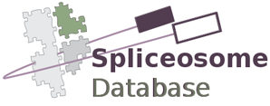 Spliceosome Database